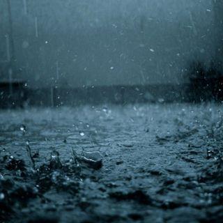 PATRONS: When it rains, it pours (33 Mins)