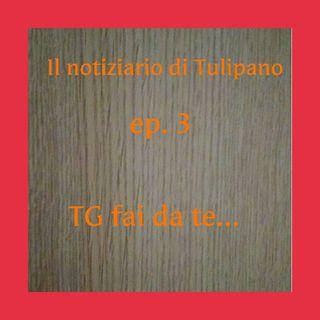 Episodio 3 - Il Notiziario di Tulipano