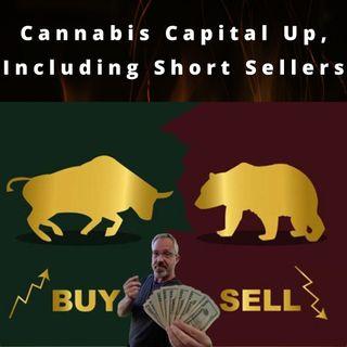 Cannabis Financial Market Update
