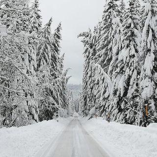 Montagna: alberi caduti, neve sui tetti, guasti elettrici. Gran lavoro per il ritorno alla normalità