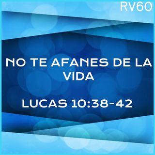 LOS AFANES DE LA VIDA (RV60)DEVOCIONALES CRISTIANOS