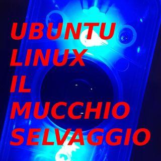 Ubuntu, Linux e il mucchio selvaggio