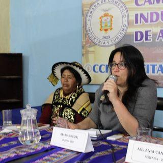 Esterilizaciones Forzadas - Ana María Vidal CNDDHH 2