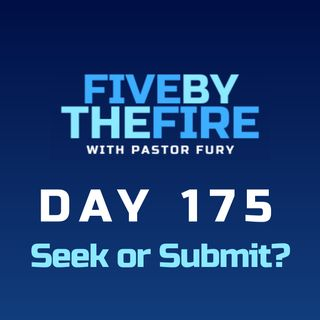 Day 175 - Seek or Submit?