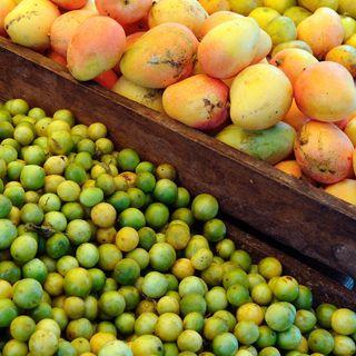 #ANBA 27 – Alimentos: estudo mapeia potencial para atender árabes