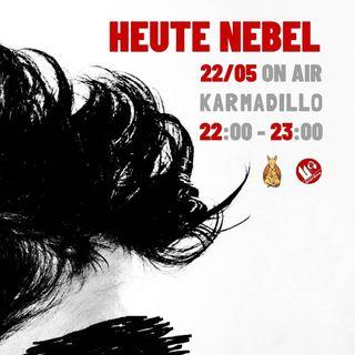 Heute Nebel: una stoner-punk band con la nebbia nel sangue - Karmadillo - s02e30