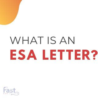 What is an Emotional Support Animal letter ESA letter and why you should get one?