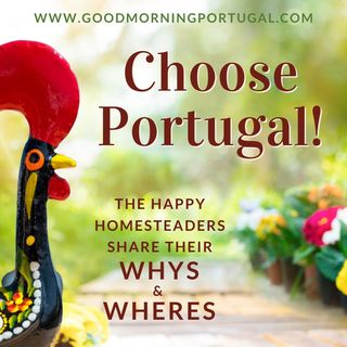 Portugal homesteading news, weather, choosing Portugal & 'Casa do Dia'
