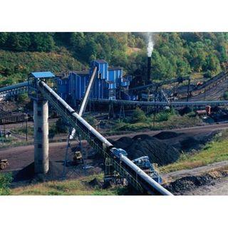 The Coal Miner