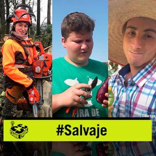 Carne Cruda - Influencers de pueblo, orgullo rural (SALVAJE #812)