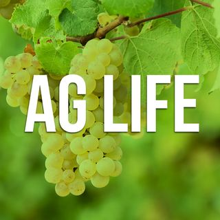 Ag Life Tuesday - September 5, 2017