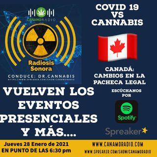 Radiosis Sonora Numero 24