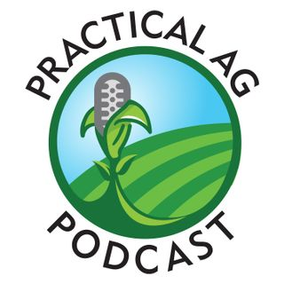 Ep 4 2020 Alfalfa Market Outlook with Josh Callan from the Hoyt Report