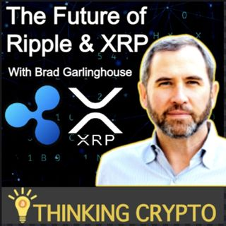 Brad Garlinghouse Interview - SEC Ripple Lawsuit, XRP, ODL, CBDCs, Bitcoin
