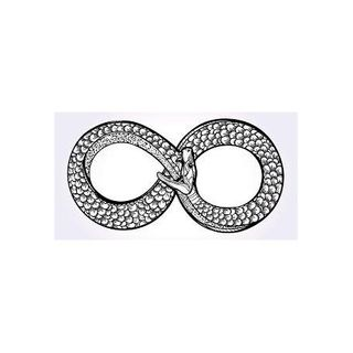 tao dualism: the serpent-coil, energy fields, and nibiru