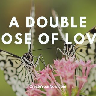 1855 A Double Dose of Love