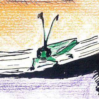 Pinocchio Capitoli 9-10