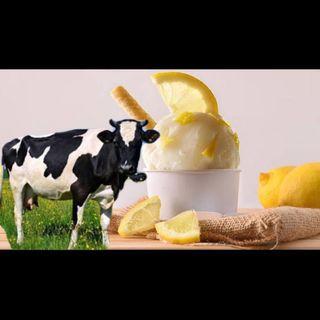 Limonlu Dondurma ve Veganlar