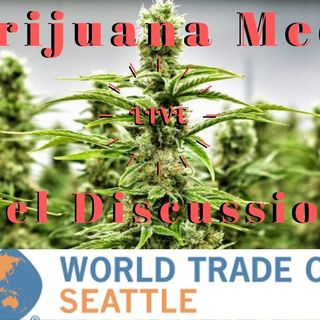 Marijuana Media Panel LIVE at The World Trade Center Seattle