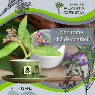 Minuto PlantaCiência - Ep. 20 - Não tome chá de confrei! (Rádio UFRJ)