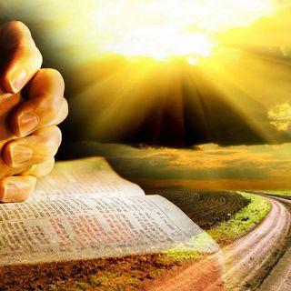 Discernimento e Sinodo dei Giovani...