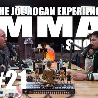 JRE MMA Show #21 with Brendan Schaub
