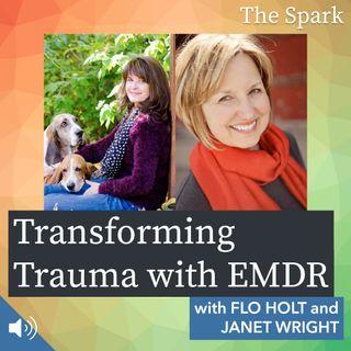 The Spark 009: Transforming Trauma with EMDR