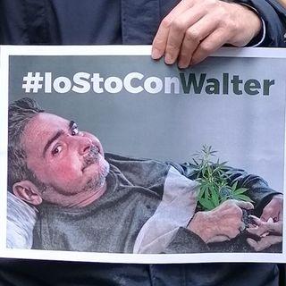 Walter è stato assolto, ma la battaglia continua