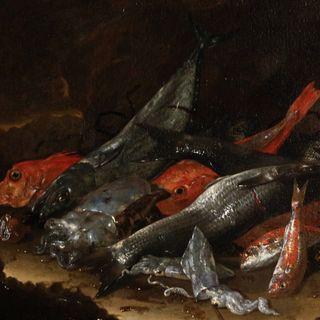 Lavate il pesce prima di andare a tavola