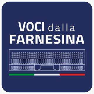 """Il mondo della diplomazia si racconta, parte """"Voci dalla Farnesina"""""""