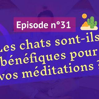 31: Les chats sont-ils bénéfiques pour nos méditations ?