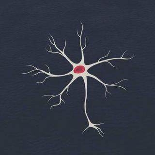Neurona 6.6