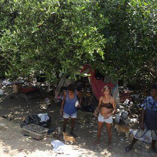 Cartagena, la pobreza de la ciudad manglar