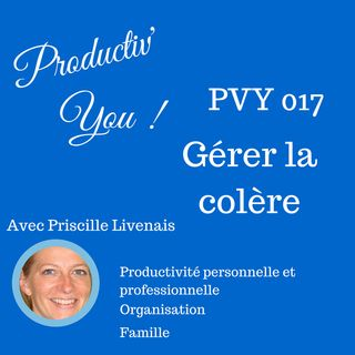 PVY EP017 RESTER CALME ET GERER LA COLERE