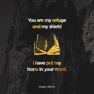 Episode 173: Psalms 119:114 (June 22, 2018)