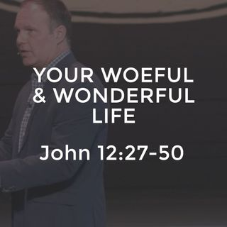 John #27 - Your Woeful and Wonderful Life
