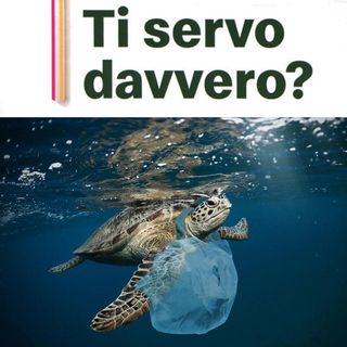 Ti serve davvero?