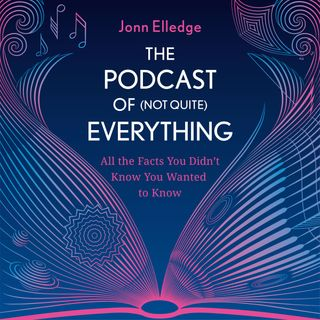 The Podcast of (Not Quite) Everything - The cosmos with Heino Falcke