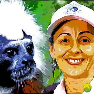 Tití Cabeciblanco, El Rockero del Bosque
