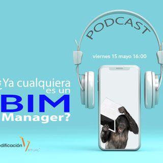 ¿Ya cualquiera es un BIM Manager?