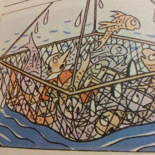 Capitolo 28 Pinocchio pescato. Siamo fritti!