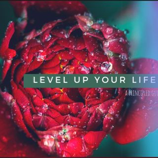 LEVEL UP RADIO: WITH T.L.