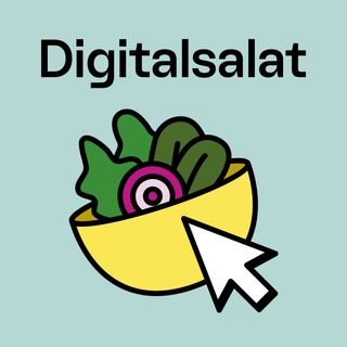 Inside Digitalsalat - Ein Rückblick aus vier Perspektiven