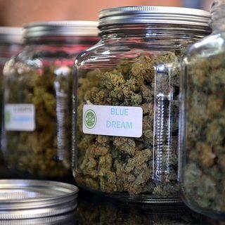 Medicinal Marijuana in Fresno