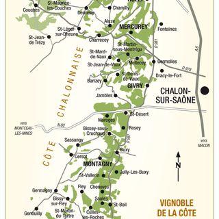 Ep 313: The Cote Chalonnaise, Burgundy's Hidden Gem