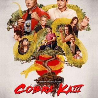 TV Party Tonight: Cobra Kai (season 3)