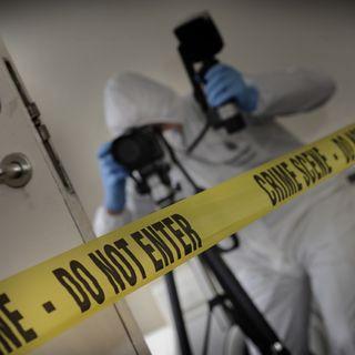 Technomondo - La scena del crimine si illumina