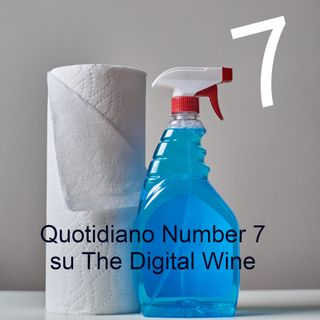 Quotidiano Number 7