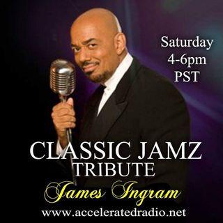 Classic Jamz *James Ingram Tribute* 2-2-19