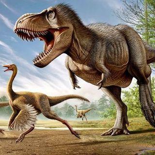 Birds are Living Dinosaurs!